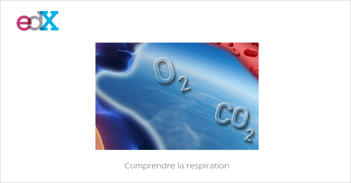 MOOC Comprendre la respiration