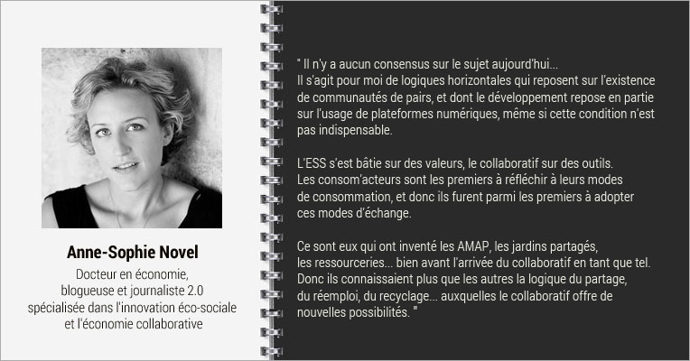 Interview Anne Sophie Novel, MOOC Comprendre l'économie collaborative
