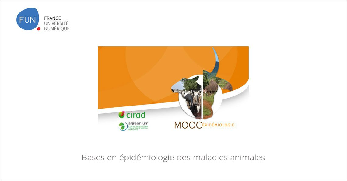 MOOC Bases en épidémiologie des maladies animales