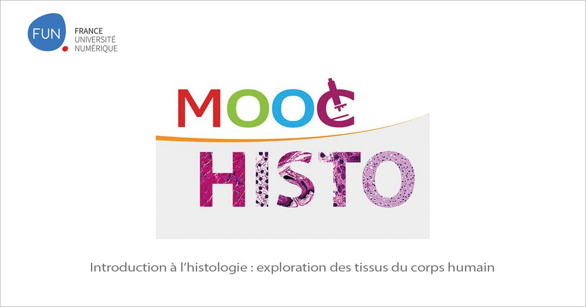 MOOC Introduction à l'histologie